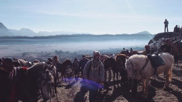 You may across the sea sand to the bottom of bromo with horses or walk (15-20mins)! Location : Mount Bromo, Java