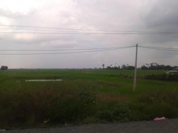 Cambodia (10)