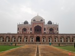 Delhi (14)